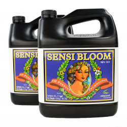 Advanced Nutrients Sensi Bloom A&B PH Perfect 5L