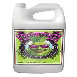 Advanced Nutrients Big Bud 5 ltr