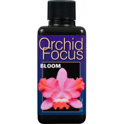 Orchid Focus 100ml Bloom
