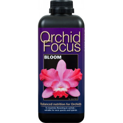 Orchid Focus 1l Bloom